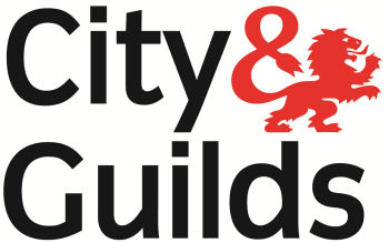 City and Guilds NVQ Level 5 in Health and Safety